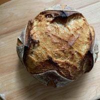 Jan 27-29 Beginner Sourdough Bake Log